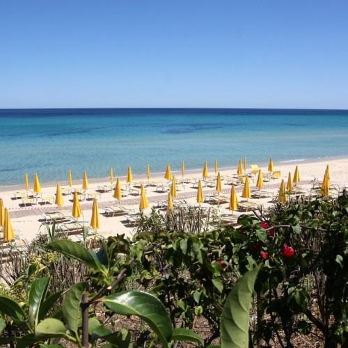 Free Beach Club - Costa Rei, Sardegna - Spiaggia
