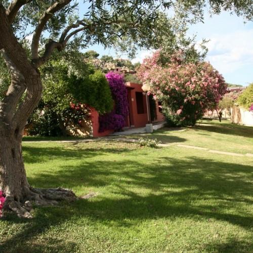 Free Beach Club - Costa Rei, Sardegna - Giardino
