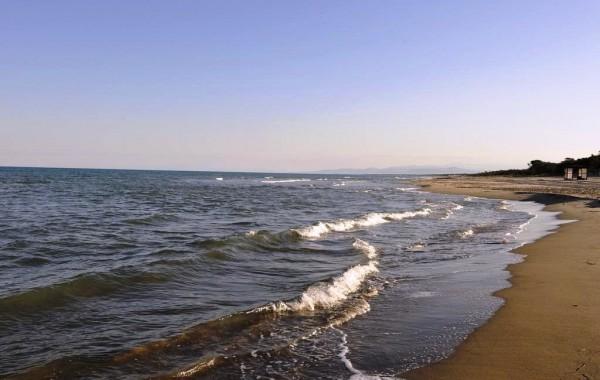 Argonauti Sea Life Experience