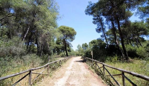 Villaggio Il Catalano - Puglia | Zona verde