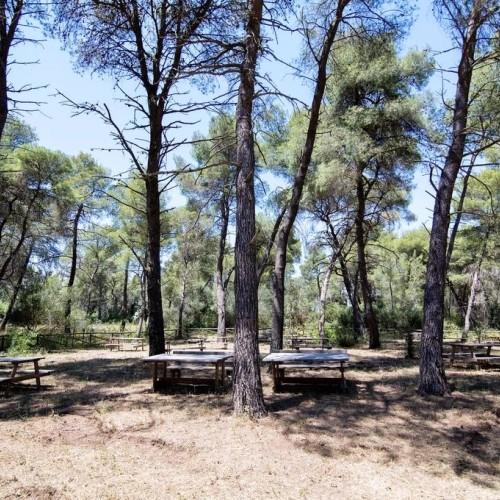 Villaggio Il Catalano - Puglia | Parco